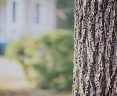 curso online de legislação ambiental e avaliação da conformidade legal
